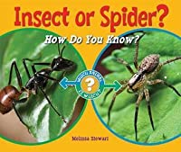 Insect or Spider?: How Do You Know?