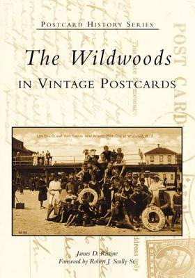 The  Wildwoods  in  Vintage  Postcards  (NJ)   (Postcard  History  Series) James D. Ristine