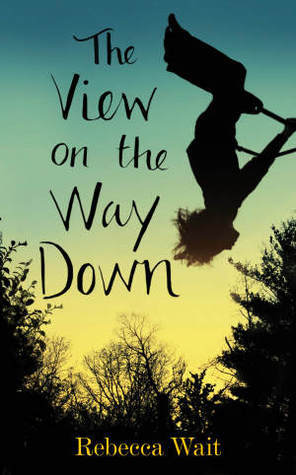 The View on the Way Down  by  Rebecca Wait