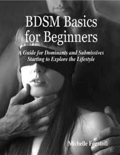 BDSM Basics for Beginners - A Guide for Dominants and Submissives Starting to Explore the Lifestyle Michelle Fegatofi