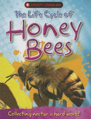 The Life Cycle of Honey Bees Clint Twist