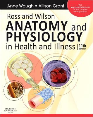 Ross & Wilson Anatomy and Physiology in Health and Illness  by  Anne Waugh