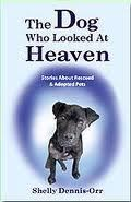the dog who looked at heaven  by  Shelly Dennis-Orr