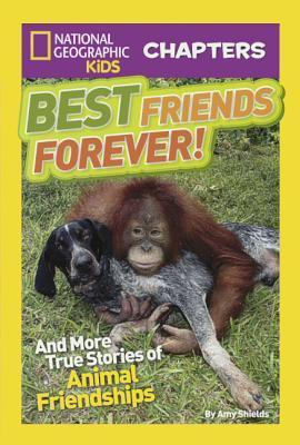 Pig Saves Cow: And More True Stories of Animal Friendships  by  Amy Shields