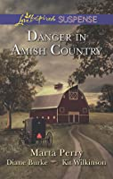 Danger In Amish Country/Fall From Grace/Dangerous Homecoming/Return To Willow Trace