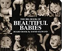Big Book of Beautiful Babies board book