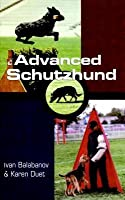 Advanced Schutzhund