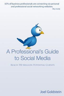 A Professionals Guide to Social Media: The complete step  by  step guide for an entrepreneur by Joel Goldstein