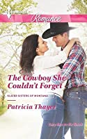 The Cowboy She Couldn't Forget