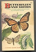 Butterflies And Moths: A Guide To The More Common American Species