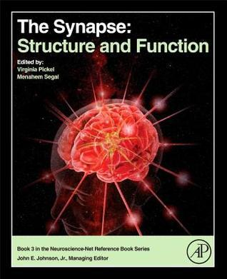 The Synapse: Structure and Function  by  Virginia Pickel