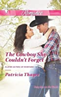 The Cowboy She Couldn't Forget (Slater Sisters of Montana)