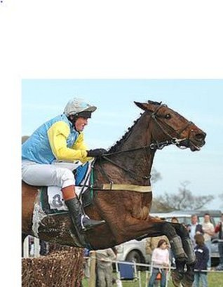 How To Win The Placepot Regularly Horse Racing Plan  by  P.J. coleman