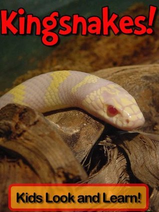 Kingsnakes! Learn About Kingsnakes and Enjoy Colorful Pictures - Look and Learn! (50+ Photos of Kingsnakes)  by  Becky Wolff