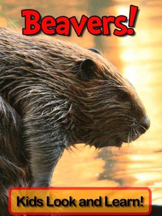 Beavers! Learn About Beavers and Enjoy Colorful Pictures - Look and Learn! (50+ Photos of Beavers)  by  Becky Wolff