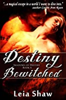 Destiny Bewitched (Shadows of Destiny)