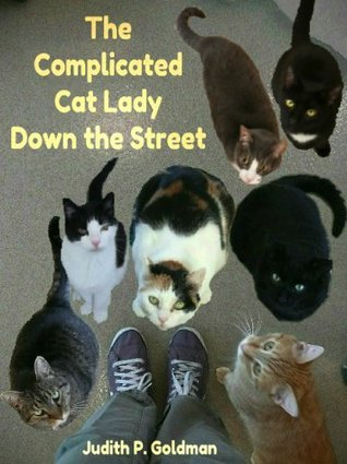 The Complicated Cat Lady Down the Street  by  Judith Goldman