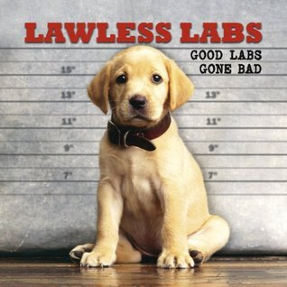 Lawless Labs: Good Labs Gone Bad  by  Kimball Leighton