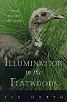 Illumination in the Flatwoods