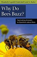 Why Do Bees Buzz?: Fascinating Answers to Questions about Bees (Animals Q & A)
