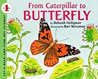From Caterpillar to Butterfly (Let's-Read-and-Find-Out Science, Stage 1)