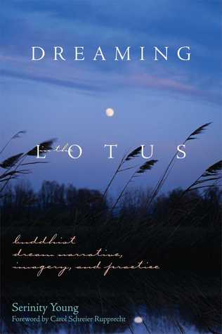 Dreaming in the Lotus: Buddhist Dream Narrative, Imagery, and Practice  by  Serinity Young