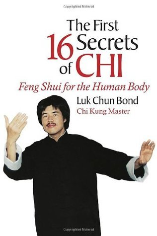 The First 16 Secrets of CHI: Feng Shui for the Human Body  by  Luk Bond