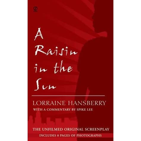 a raisin in the sun review book