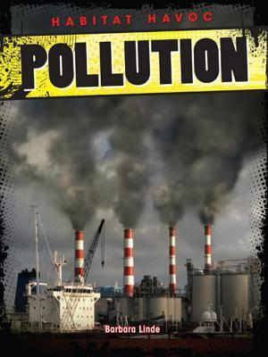 Pollution  by  Barbara M. Linde
