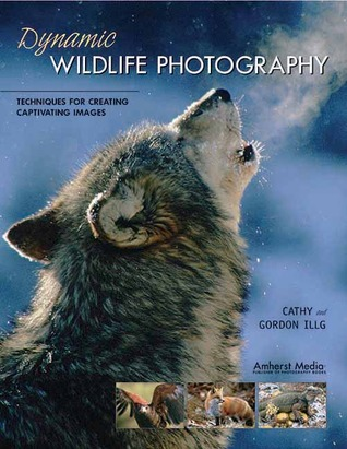 Dynamic Wildlife Photography: Techniques for Creating Captivating Images  by  Cathy Illg