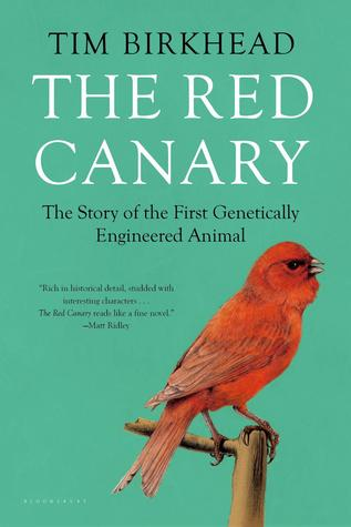 The Red Canary: The Story of the First Genetically Engineered Animal  by  Tim Birkhead