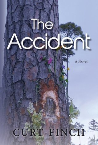 The Accident: A Novel  by  Curt Finch
