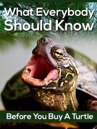 What Everybody Should Know Before You Buy a Turtle | Learning About Your New Companion |  by  Carol Smarte