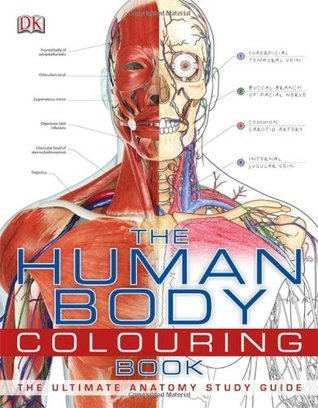 The Human Body Coloring Book: The Ultimate Anatomy Study Guide DK Publishing