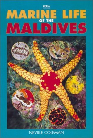 Marine Life Of The Maldives Katharina Fabricius