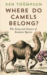 Where Do Camels Belong  by  Ken Thompson