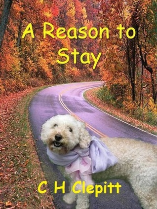 A Reason to Stay  by  Claire Evans