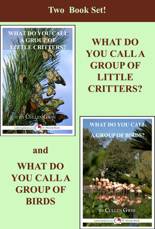 Two Book Set! What Do You Call A Group Of Little Critters and What Do You Call A Group of Birds  by  Cullen Gwin