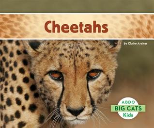 Cheetahs  by  Claire Archer