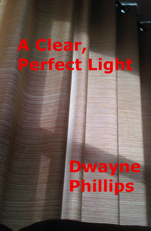 A Clear, Perfect Light  by  Dwayne Phillips