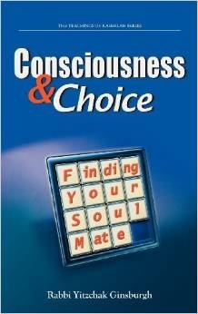 Consciousness & Choice: Finding Your Soul Mate  by  Yitzchak Ginsburgh