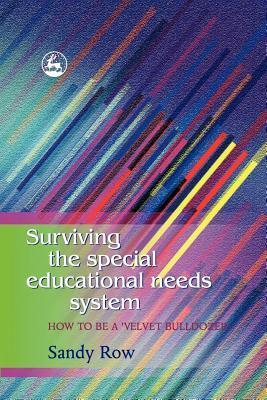Surviving the Special Educational Needs System: How to Be A A Velvet Bulldozer Sandy Row