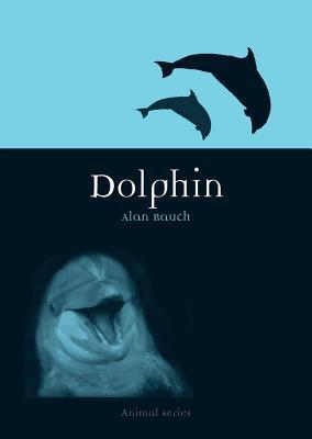 Dolphin  by  Alan Rauch