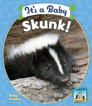 Its a Baby Skunk!  by  Kelly Doudna
