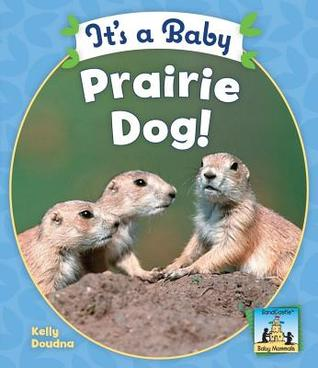 Its a Baby Prairie Dog!  by  Kelly Doudna
