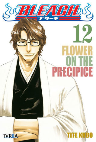 Bleach, tomo 12: Flower on The Precipice Tite Kubo