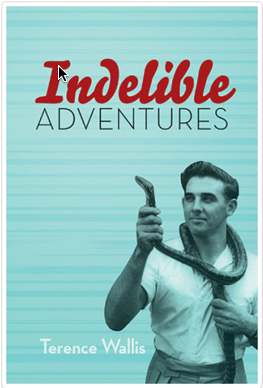 Indelible Adventures  by  Terence Wallis