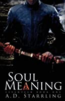 Soul Meaning (Seventeen, #1)