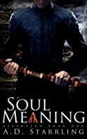 Soul Meaning (Seventeen #1)