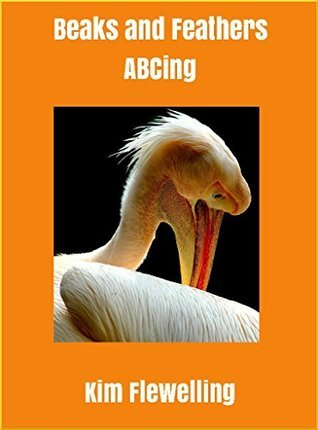 Beaks and Feathers: ABCing  by  Kim Flewelling